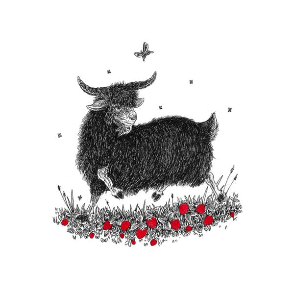 Image or graphic for Red Goat