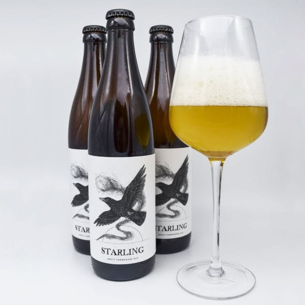 Starling-Arrowood_Beers_For_Sale_2020-0164