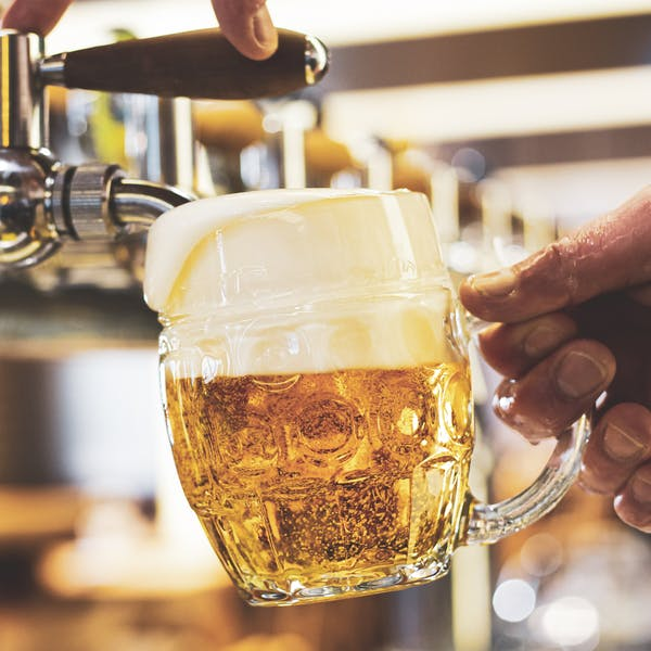 A man pouring draft lager beer into a dimpled glass mug  in a modern pub. Overflowing glass.