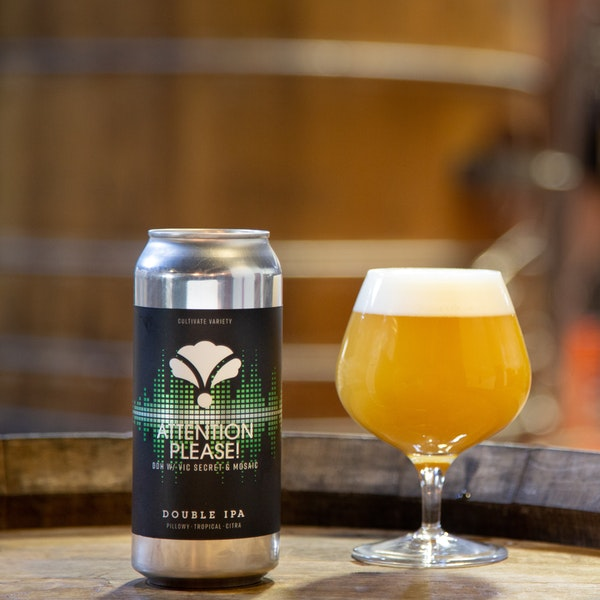 Attention Please! DDH w/Vic Secret & Mosaic