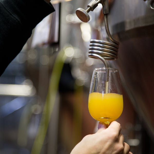The Best Craft Breweries to Visit in Tennessee