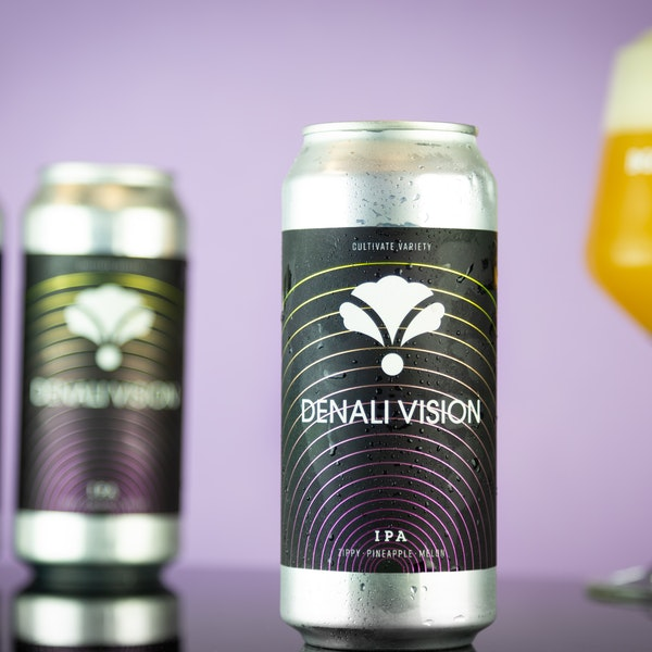 Image or graphic for Denali Vision