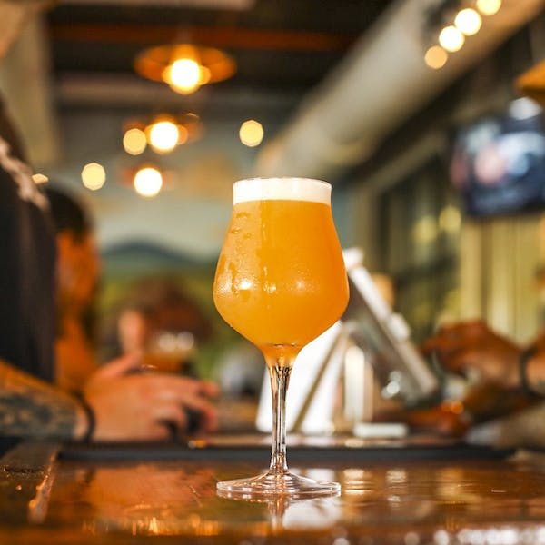 324 of the Best IPAs, Blind-Tasted and Ranked
