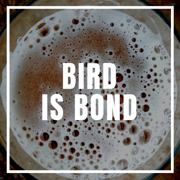 Image or graphic for Bird is Bond