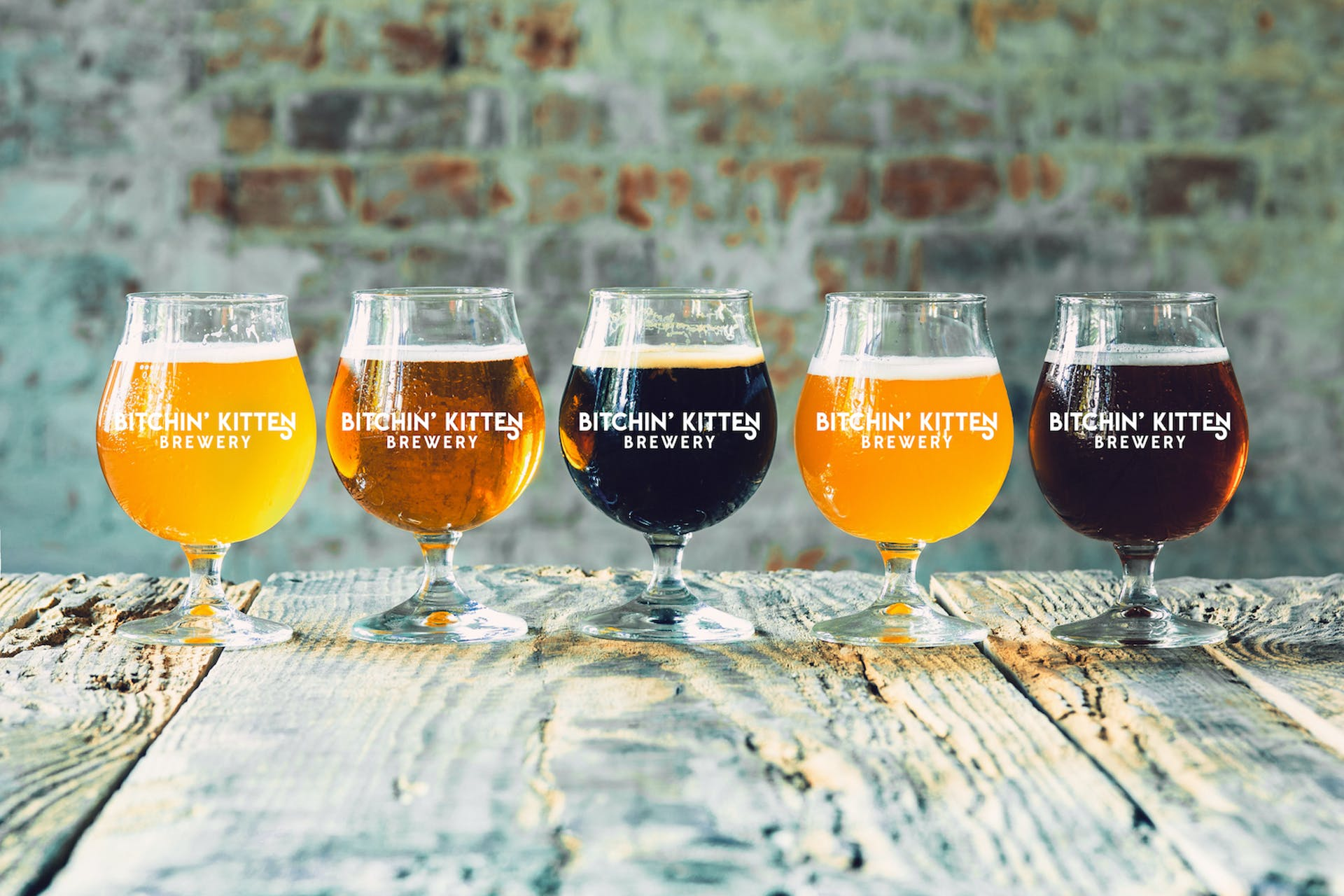 Glasses of different kinds of beer on wooden background