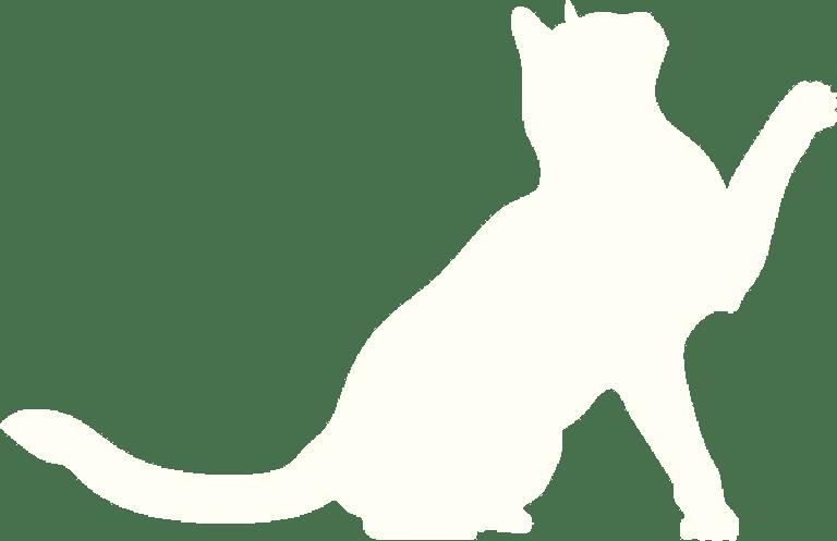 cat-clawing-light-2x
