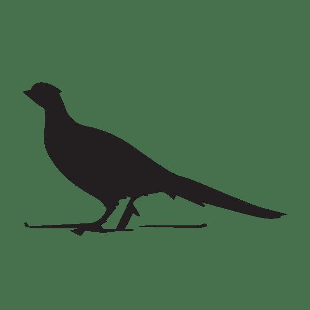 BIRD(1)