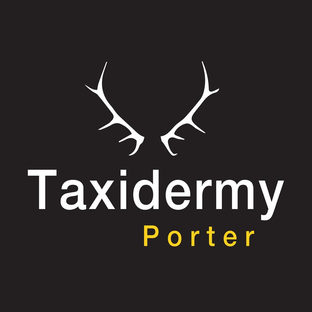 Taxidermy-Porter-Logo
