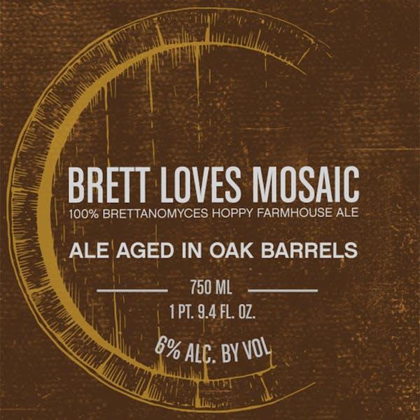 Brett Loves Mosaic