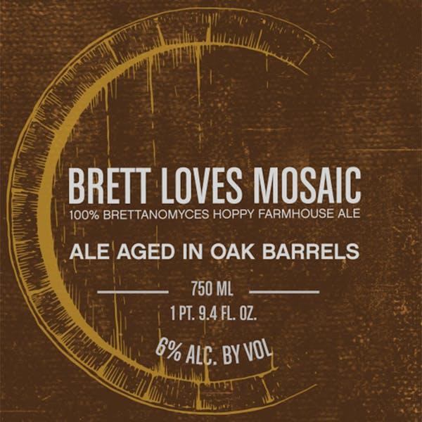 Brett-Loves-Mosaic
