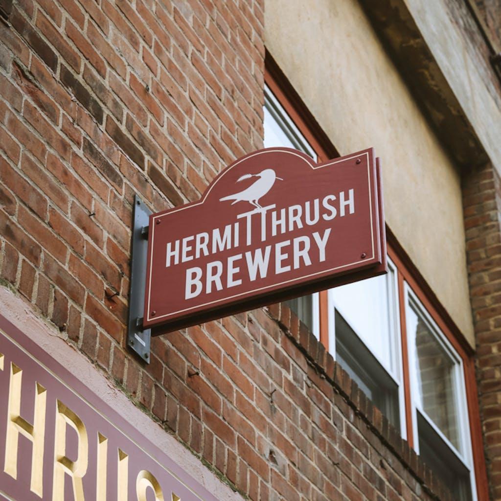 hermit+thrush+-+5 (1)