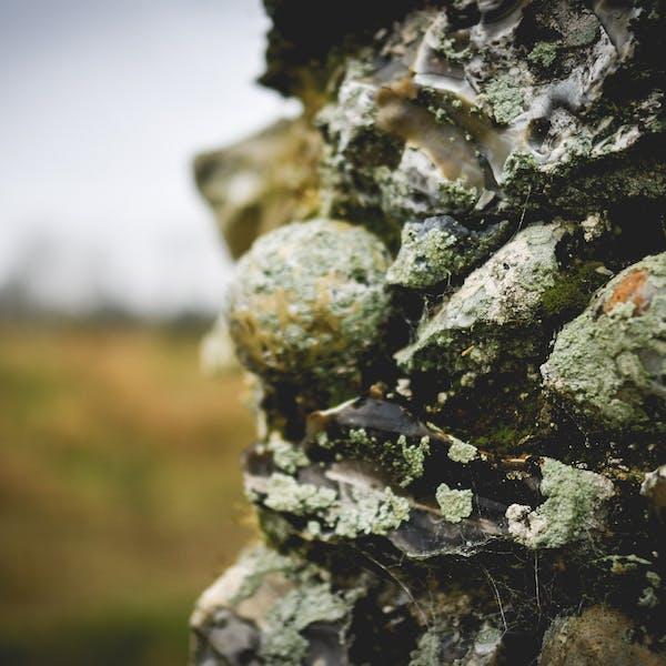 Bedrock – Stone – Part 4