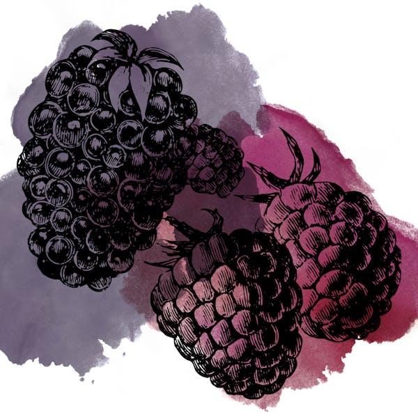 Graphic for Sour Blackberry Raspberry