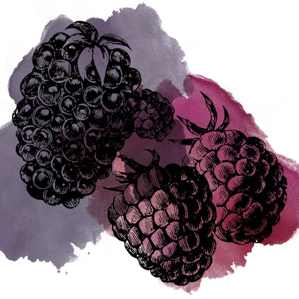 Image or graphic for Sour Blackberry Raspberry