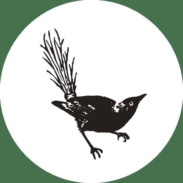 bird-icon