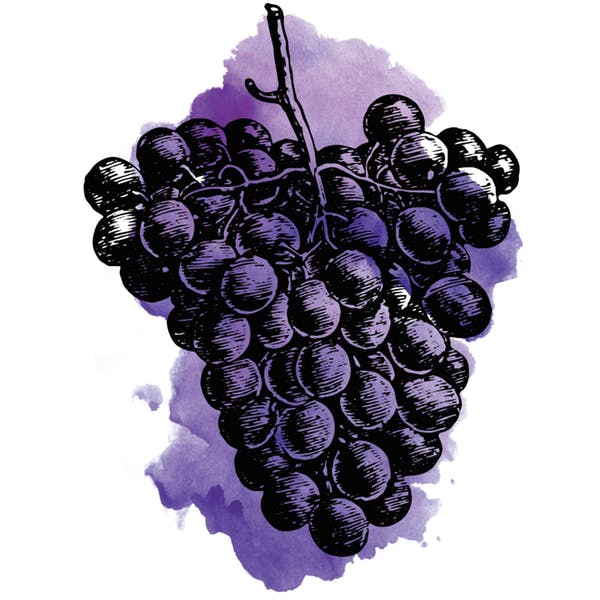 Image or graphic for Sour Concord Grape