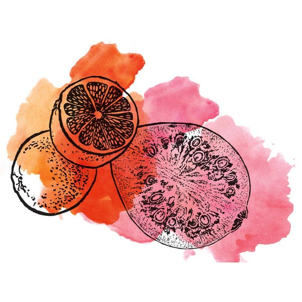 Graphic for Sour Guava Tangerine