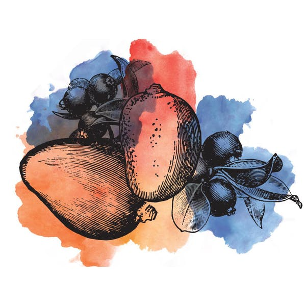 Image or graphic for Sour Blueberry Mango