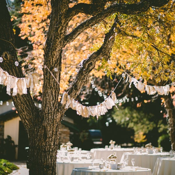 TEMP_Private_Event_Tables_Tree_Lights