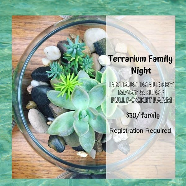 Terrarium Family Night
