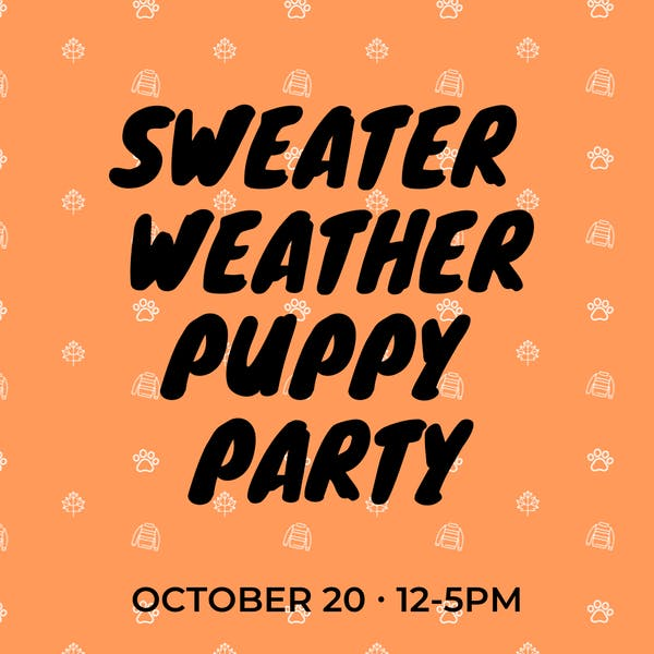 Copy of sweater weather puppy party
