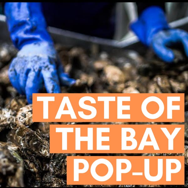 Copy of taste of the bay pop-up