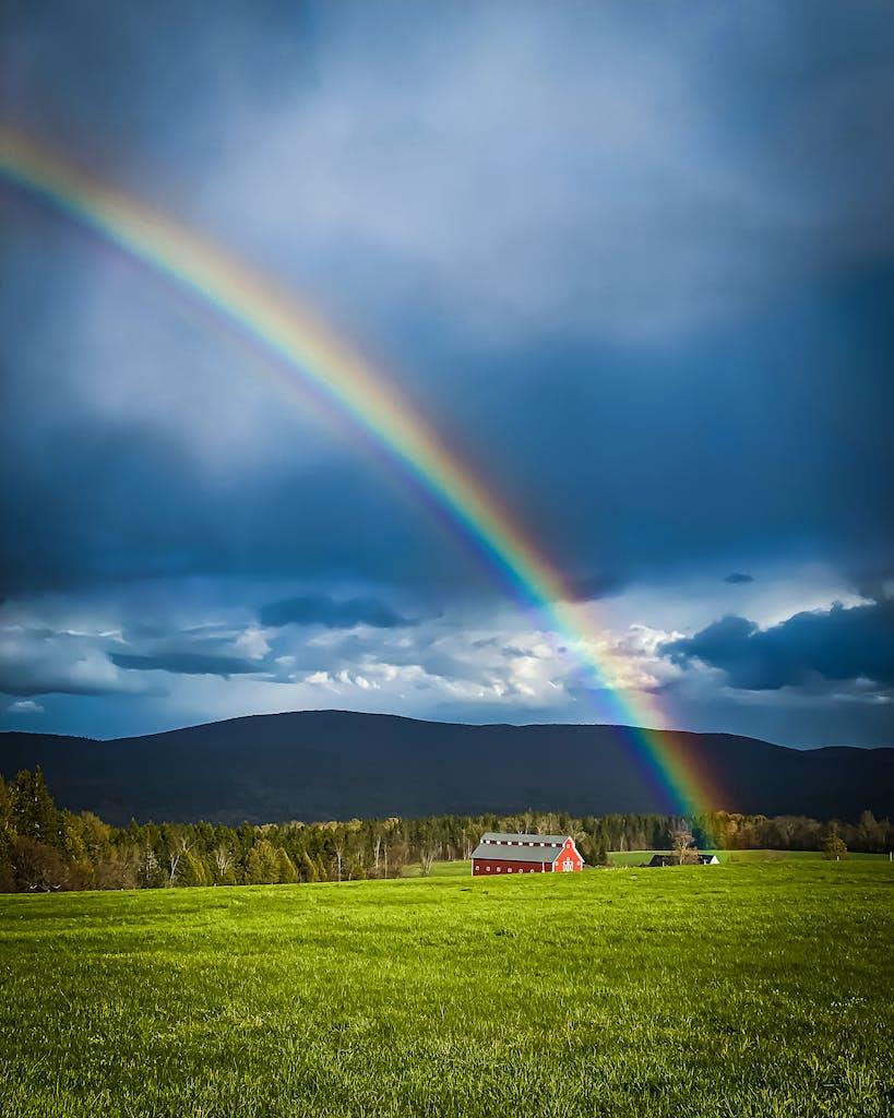 HFB jaffin rainbow