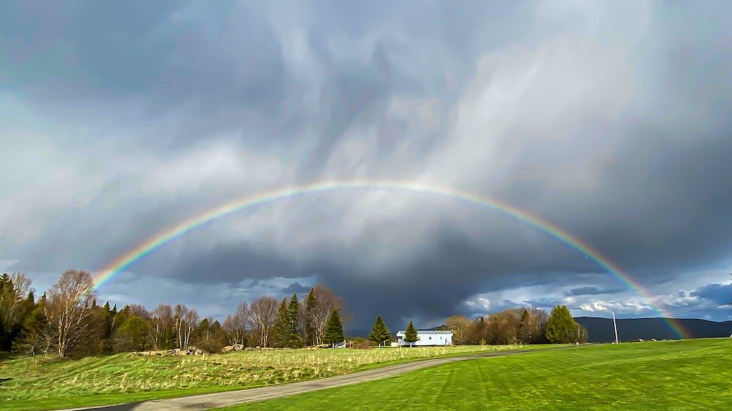 Sharon's Rainbow