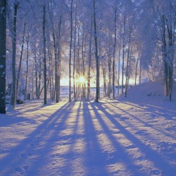 Darkness Into Light: A Winter Solstice Celebration at Parker Pie, 21 December