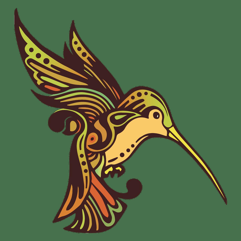 Humboldt humming bird, green