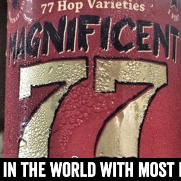 The Quenching Peregrination of Magnificent 77 (Hops Abound)