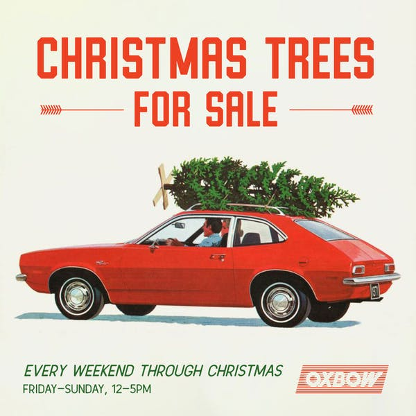 christmas_trees_for_sale_graphic