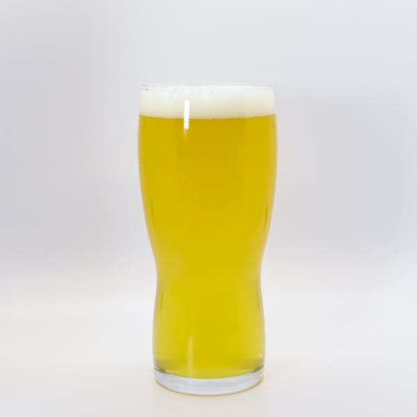 Pangaea draft beer in a glass