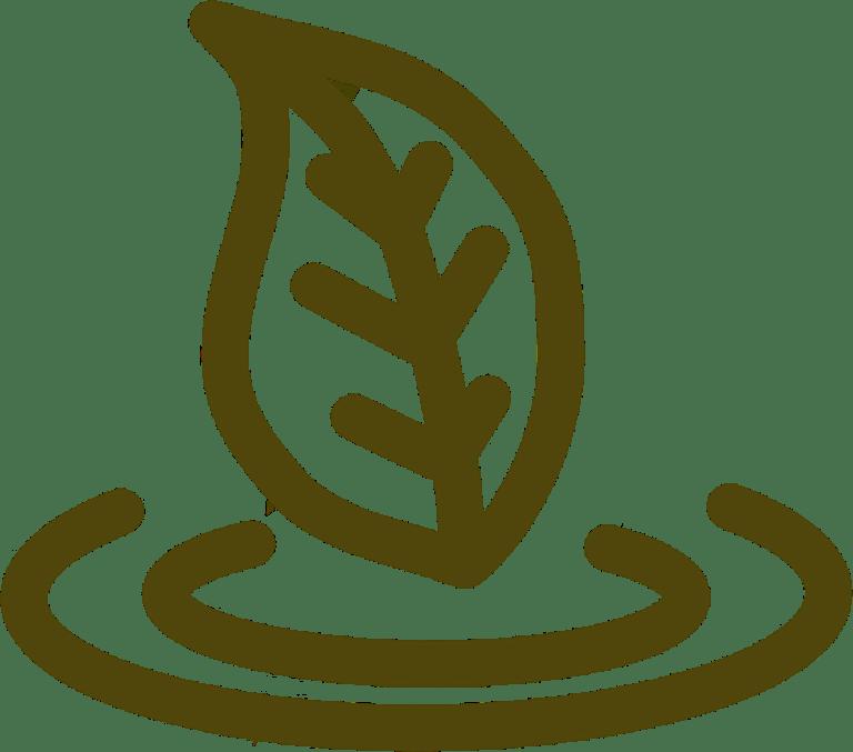 The Pangaea icon for leaf