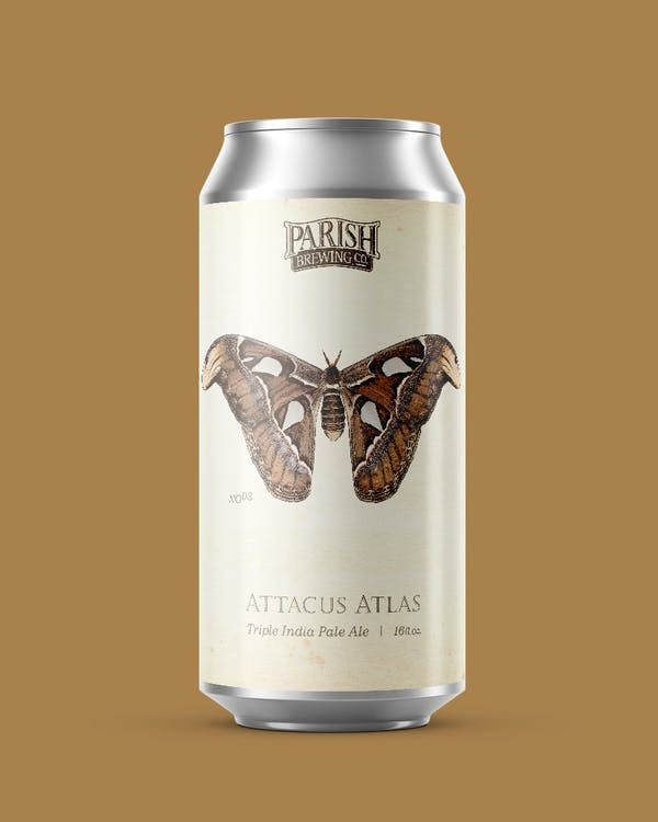 Image or graphic for Attacus Atlas
