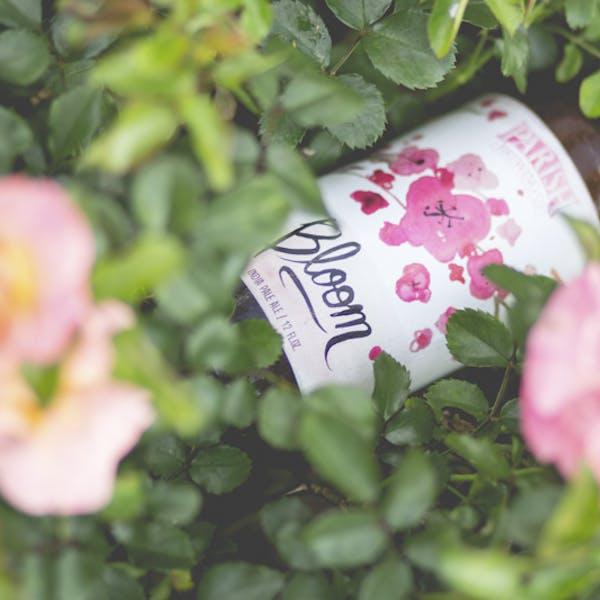 PARI-Bloom