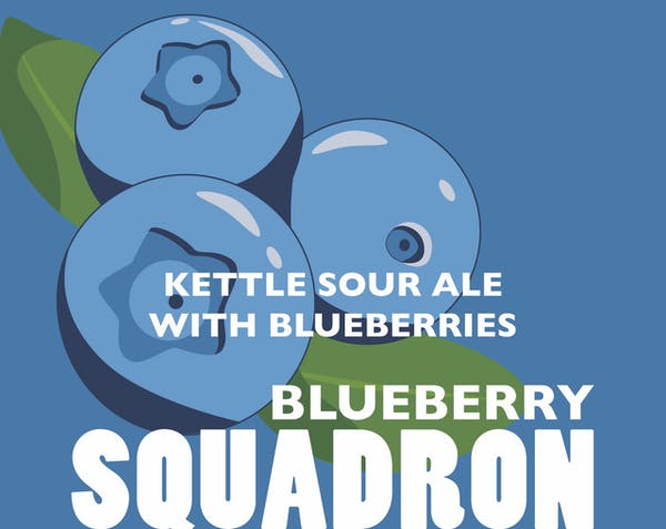 Image or graphic for Blueberry Squadron