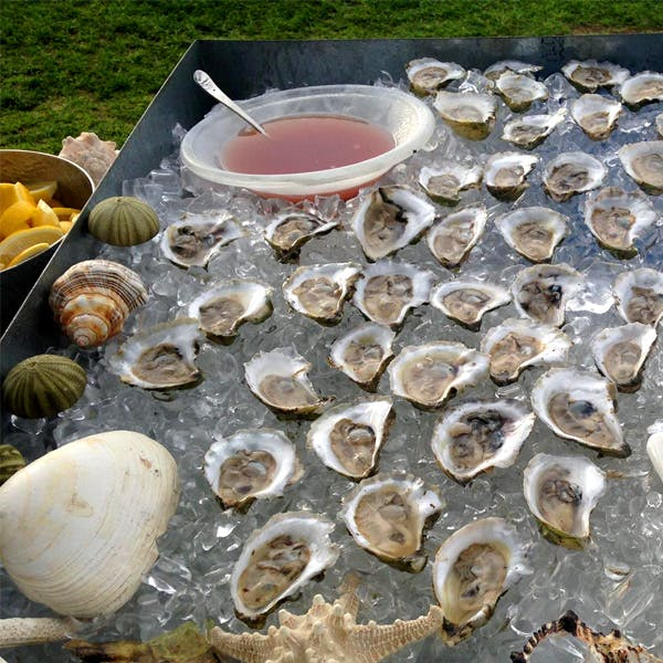 O'Oysters