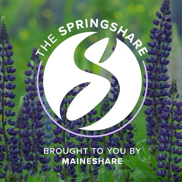 Spring Share 2018