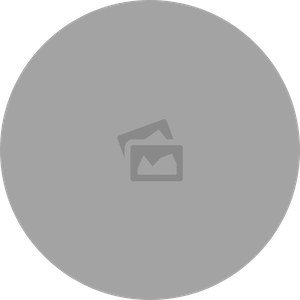 WF-image-circle-dark