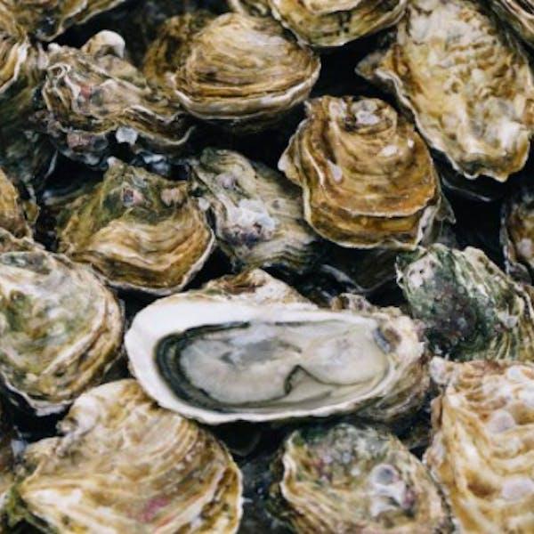 Oyster Roast Saturdays