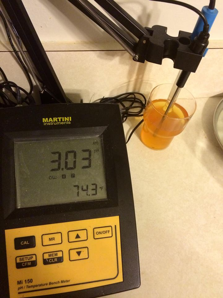 Martini Instruments Mi 150 pH/Temperature Bench Meter - our Sour Citrus Wheat was fermented with three brettanomyces strains as well as a mixed bacteria culture, and it eventually dropped to a very sour 2.98 pH before packaging.