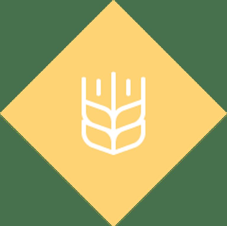 home-wheat-icon